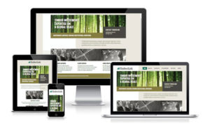 Timberlink Responsive Web Design