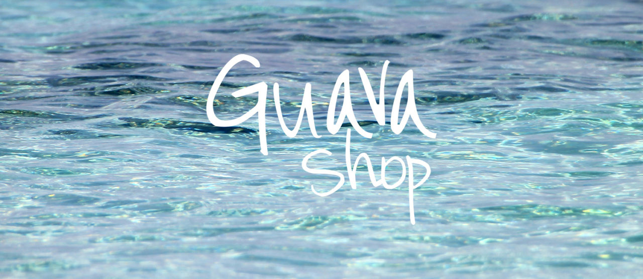 Client Spotlight :: Guava Shop