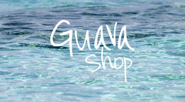 Client Spotlight :: Guava Shop