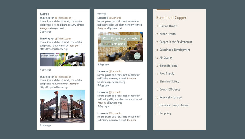 Copper Alliance Website Design with Social Integration
